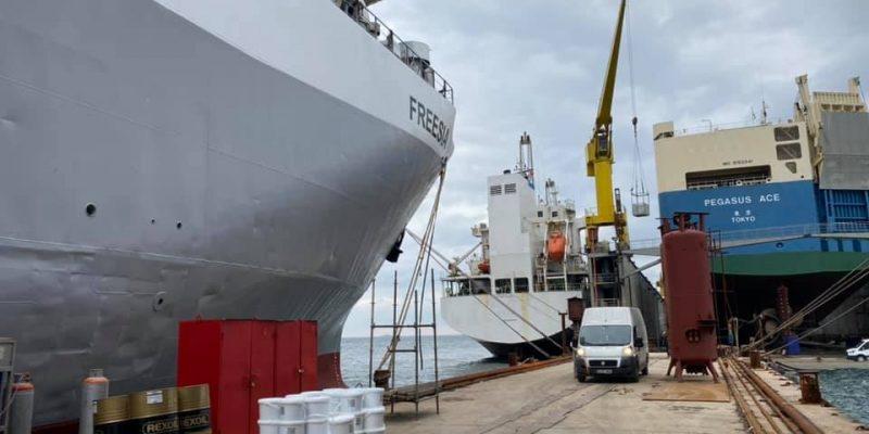freesia hayvan gemisi zemin kaplama